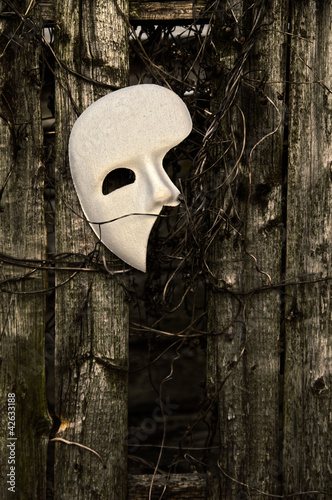 Masquerade - Phantom of the Opera Mask on Weathered Fence