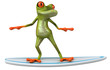 Frog surfing