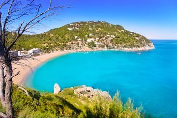 Aerial view of Caleta de Sant Vicent in Ibiza island