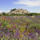 Provence - Château de Grignan