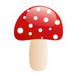 agaric mushroom - 42655946