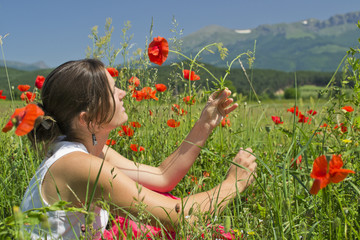Summer and poppies