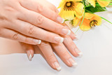 Beautiful nails with french and flowers