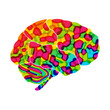 human brain, rainbow dream