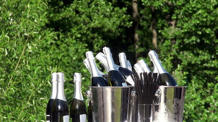 Bottles of champagne in a buckets at the nature.