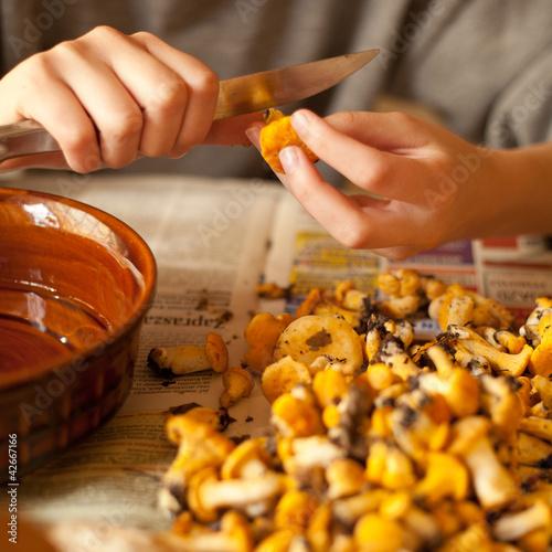 kurki grzyby kurka grzyb las grzybobranie gotowanie jedzenie