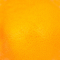 Macro photo of grapefruit texture