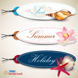 Set of  Holiday Badges, Labels, Tags with shells and place for t