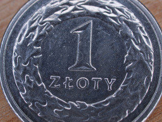 Polish currency : 1 zloty