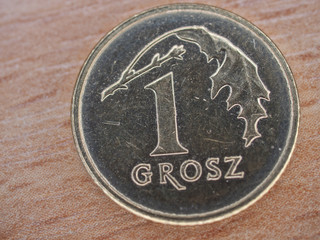 Polish currency : One grosz