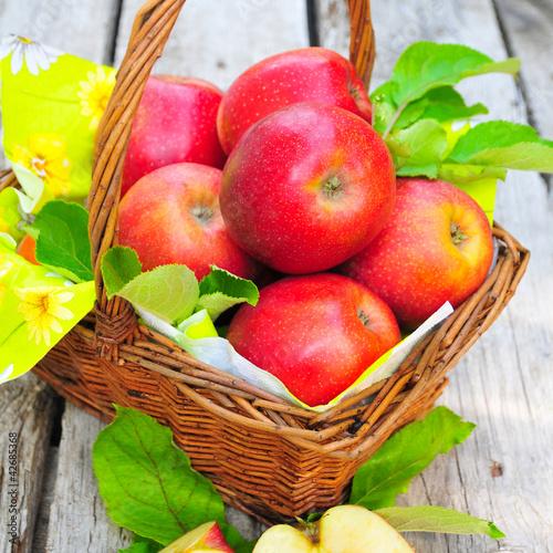 Knackig rote Äpfel im Korb