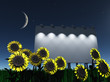 Night roadside billboard with sunflowers