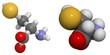Selenocysteine (Sec, U) molecule