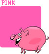 Color Pink and Pig Cartoon