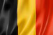 Belgian flag - 42697100
