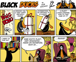 Black Ducks Comics episode 74
