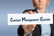 CMS, business, Content Management System