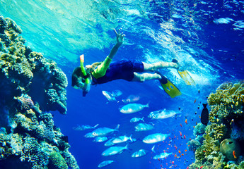 Child diver with group coral fish.