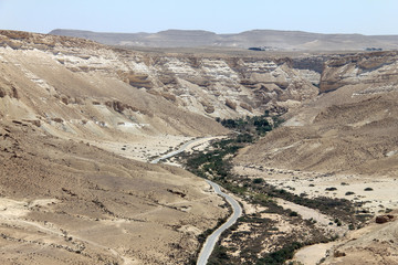 Ein Avdat Canyon in Negev desert, Israel