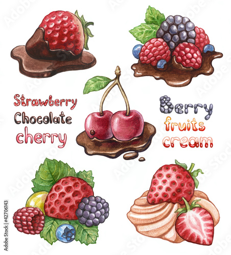 Set of berry Illustrations