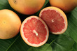 Ripe red grapefruits, whole and cut, on the palm leaf