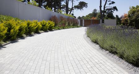 Plants along cobblestone driveway