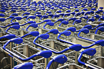 Shopping carts in rows