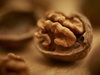 Close up of walnut in shell