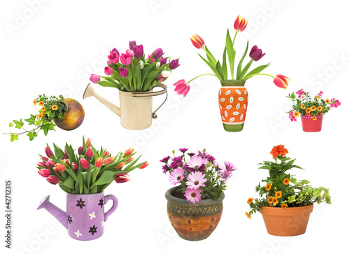 Various spring and summer flower pots isolated on white