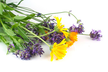 Lavender and Calendula