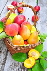 Frische verschiedene Obstsorten im Korb