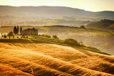 Fototapety View of typical Tuscany landscape