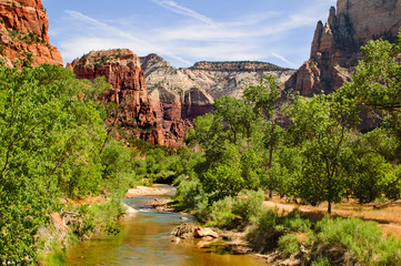 Scenic views of the Zion National park