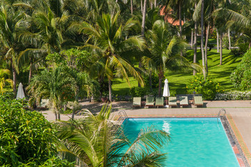 Beach hotel resort swimming pool surrounded by palm trees