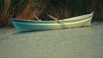 Small Rowing Boat Anchored Between the Reeds at Mogan Lake