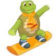Funny Turtle. Snowboarding.
