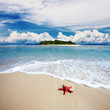 landscape of tropical island beach with perfect sky .