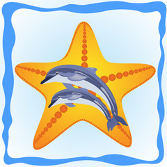 Starfish and dolphins