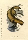 Detail of soviet cover