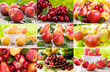 collage with fruits and berries