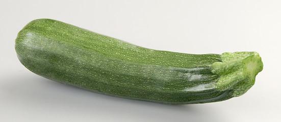 Zucchina 3