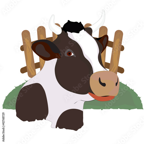 horned cow who lives on a farm