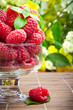 Sweet fresh raspberry fruits in glass goblet