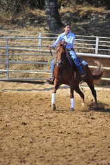Girl riding a horse in competition
