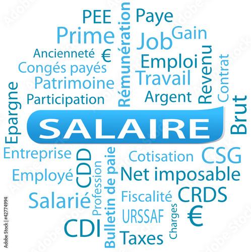 nuage de mots ; salaire