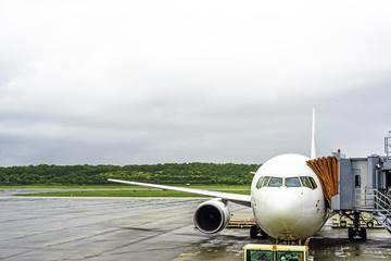 jet airplane at loading