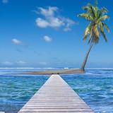 Fototapety passerelle d'accès à l'île au cocotier