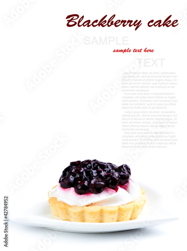 Fresh Blueberry Cake isolated on a white background
