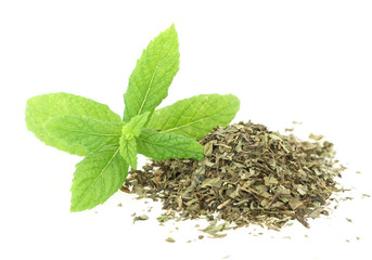 Fresh and dry mint