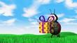 ladybird carries present